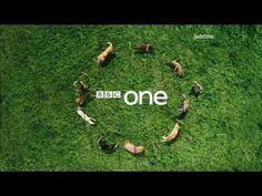 BBC One - Ident - Dog Display - (Short Edit) 2009 - YouTube