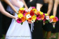gerbera-daisies-bouquet