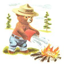 Smokey the Bear, Richard Scarry Illustration Vintage Children's Books, Vintage Ads, Vintage Campers, Vintage Stuff, Wildland Firefighter, Richard Scarry, Smokey The Bears, Bear Art, My Childhood Memories
