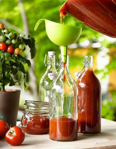 What do a 100-year old recipe, Funky Fermentation, and a Slow Cooker have in common? Ketchup. Ketchup, or Catsup, depending on where you hail from in this country is a ubiquitously American condiment–now synonymous with the brand, Heinz. But believe it or not, 100 years ago, many people made their own pungent red condiment. Join …