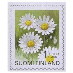 Postimerkki: Maakuntakukat - Päivänkakkara  | Suomen postimerkit Postage Stamps, Finland, Presents, Paper, Plants, Stamps, Flowers, Art, Gifts