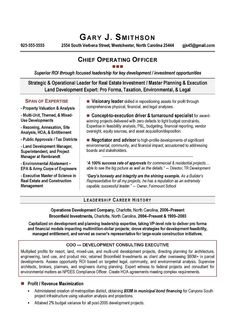 Ceo Resumes Interesting Ceo Executive Resume Sample  Resume  Pinterest  Executive Resume .