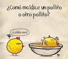 #Humor ¿Cómo maldice un pollito a otro pollito? ¡Caldito seas! vía @Candidman