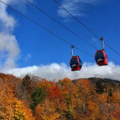 """2015-10-14  1:33 p.m. The #OverEasyGondola at #StoweMt""  @stowepatroller"