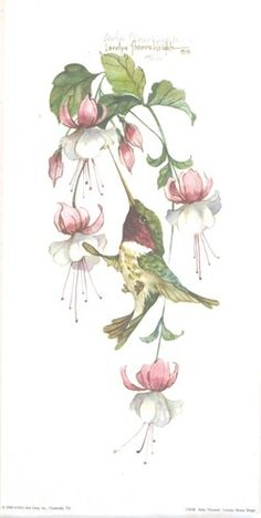 """This 12"""" x 6"""" lithograph is based on an original watercolor by Carolyn Shores Wright. The image is one of many hummingbirds with flowers she has painted over the years."""