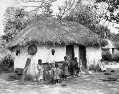 Old time Jamaica. Thatched roof and all. Folks lived like this on the Blaine Estate in the first half of the century.