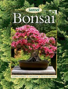 Bonsai by Susan Lang  #Books #Bonsai
