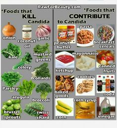 Candida causing foods