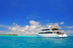Maldives cruise #voyagewave #themaldives →www.voyagewave.com
