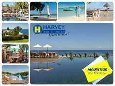 La Plantation d' Albion Mauritius - 7 Nights From R23,100 p.p. Subject to price terms  Package Includes Flights ex OR Tambo International Approximate airport taxes Return transfers 7 Nights accommodation in a Club Room 3 meals a day, snacking, beverages, drinks, open bar Children's Club facilities from the age of 2 to 17 years Club Med Entertainment  Contact:  Brigitte +27(0)82 826 1451 brigitte.gonggryp@harveyworld.co.za