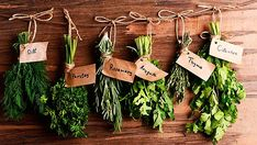 How to Dry Fresh Herbs To Enjoy All Year Round