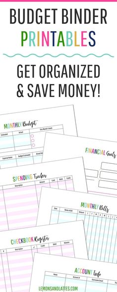 Get your family money organized with this EDITABLE Budget and Bill