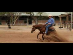 Awesome Reining Horses - Out West