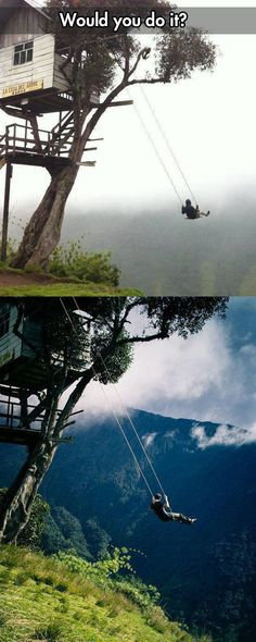 cool swing cliff tree house Ecuador - http://leakhunt.com/cool-swing-cliff-tree-house-ecuador/