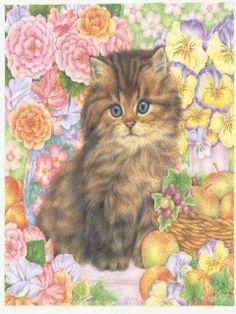 Анимации кошек