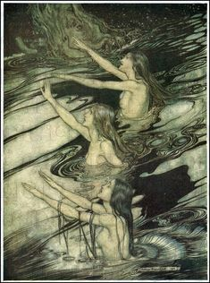 vintage fine art reproduction poster - Arthur Rackham - Siegfried & The Twilight of the Gods - water nymphs naiads sirens Arthur Rackham, Art Magique, Water Nymphs, Ondine, Vintage Fairies, Mermaids And Mermen, Alphonse Mucha, Mermaid Art, Les Oeuvres