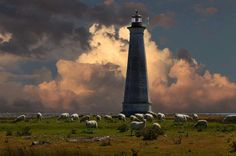 Visit the Cape Sable Lighthouse this weekend during the Lights Along the Shore Festival. Boat rides will be available from 9AM - 2PM - free will donations accepted. All donations will go towards the painting of the light. This is Nova Scotia's tallest lighthouse!  There will be a Light Keepers Supper & Entertainment Saturday night (September 21, 2013), cost is $15/person - Baked beans, ham, homemade brown bread and more! Call for tickets - 745-2390!