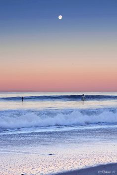 Trying to get in those last few waves before the sun goes down...YES!