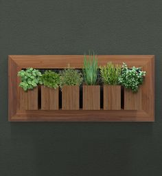 bamboo planter boxes in wooden frame for an organized herb garden Wooden Planters, Planter Boxes, Bamboo Planter, House Plants Decor, Plant Decor, Flower Boxes, Diy Flowers, Plant Box, Decoration Plante