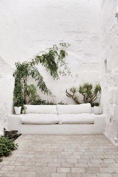 // all white // greenery //