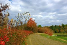 ...al parco Miralfiore di Pesaro
