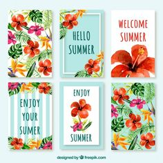 Pack of watercolor poppies cards Free Vector
