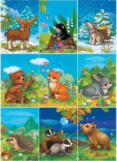 Демонстрационный материал Дикие животные, Животные наших лесов Farm Pictures, Cute Animal Pictures, Montessori Activities, Toddler Activities, Forest Animals, Woodland Animals, Baby Badger, Sunflower Cards, School Images