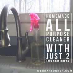 Homemade All Purpose Cleaner Using 2 Ingredients