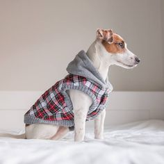 Flannel Fleece Dog hoodie Dog jacket Dog clothing Puppy