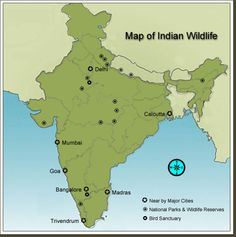 Master Map Indian Wildlife National Parks | Wildlife Sanctuary | Tiger Reserves | Flora and Fauna!