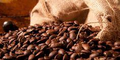 Según México Desconocido, somos el primer destino cuando en lo que piensas es en café.