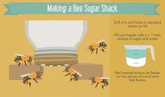 Creating a Bee-Friendly Garden - Creating a DIY Mason Jar Feeder for your Bees
