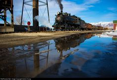 RailPictures.Net Photo: NNRY 93 Nevada Northern Railway Steam 2-8-0 at Ely, Nevada by Sasha Young