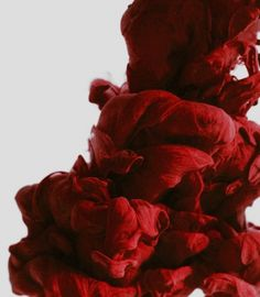 Another of Alberto Seveso's work- this photograph of ink in water captures the passion of romance through its vibrant red colour that represents energy and excitement. Witch Aesthetic, Red Aesthetic, Character Aesthetic, Wanda Marvel, Hawke Dragon Age, Blood Mage, Maleficarum, Ink In Water, Zuko