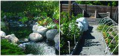 Westside Gardeners Honoured for Beautiful Curb Appeal