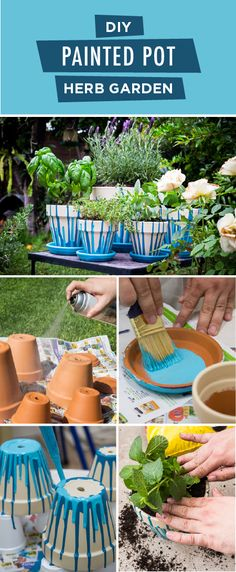 Add some color to your backyard with this DIY painted pot herb garden from BEHR. This easy outdoor project would make for a perfect Mother's Day gift. Start by painting your terracotta pots with a neutral shade of Sand Motif. Then, add bright accent colors like Fiji and Caribe to complete this vibrant eclectic look.