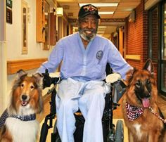 It's amazing what animals can do for people:) US Veterans Hospital. Service Dogs flank the the grinning vet.