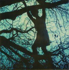 climb...beautifulyourself