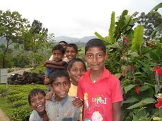 Happy kids at an organic and Fair Trade supported tea estate in Sri Lanka