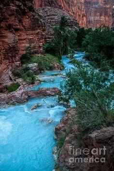 ✯ Havasu Creek