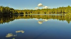 A nice little lake outside my hometown of Arboga, a beautiful autumn evening and the sun and beautiful surroundings