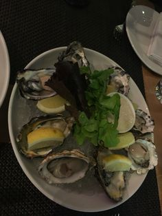 Fabulous Oyster in Cape Town