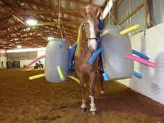 Training obstacle course ideas, horse stuff