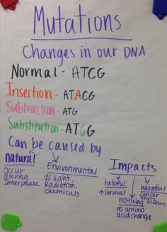 Mrs. Paul - Biology: Biology Notes/Charts