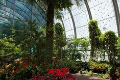 Singapore Changi Airport - numerous greenhouses, cactus and butterfly gardens - best layover!