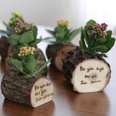 Cherry Bark Place Card Holders, Rustic wedding seating card stand with lace heart Dark wood Holiday Table Decor Bridal Showers Party Favors Rustic Wedding Wood Slice Crafts, Wood Burning Crafts, Wood Burning Art, Wood Crafts, Hanging Succulents, Hanging Planters, Rustic Wedding Seating, Bridal Shower Decorations, Wedding Decoration