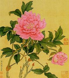 nice In China, the most important country of peony origins, many splendid pictures ha...