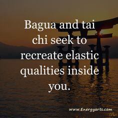 Although bagua zhang and tai chi chuan have important differences, they are wonderfully complementary brother and sister practices.
