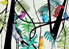 mausbird jungle
