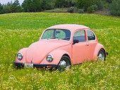 1968 Volkswagen Bug Pink - In Field Of Wildflowers beetle-mania